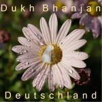 sidak_flower_dukh_bhanjan